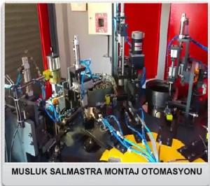 MUSLUK-SALMASTRA-MONTAJ-OTOMASYONU